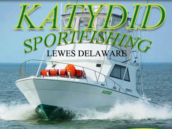 Katydid-Charter-Boat-Rehoboth-DE-01.png