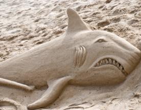 build-a-beach-sand-castle-03.png