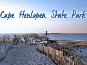 cape-henlopens-state-park-rehoboth-beach-de-600x450-01.jpg