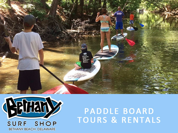 Bethany Beach Surf Shop Tours and Rentals