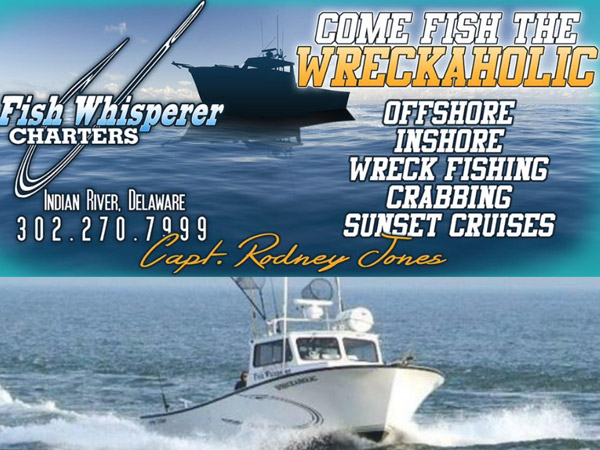 Fish whisperer charters visit delaware beaches for Rehoboth beach fishing
