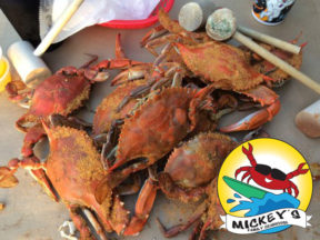 Mickey's Family Crab House Bethany Beach