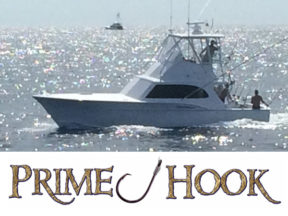 Prime Hook Fishing Charters - Delaware