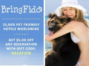 Bring Fido - Pet Friendly Vacation Rentals in Rehoboth Beach, DE