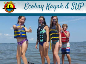 Ecobay Kayak Adventures Bethany Beach DE