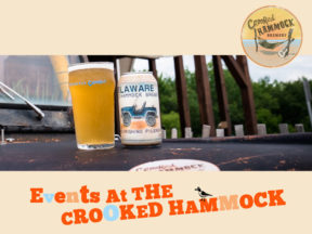 Crooked Hammock Live Music Events Rehoboth Beach DE