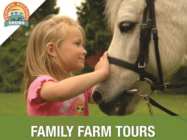 Rehoboth Beach Family Farm Tours