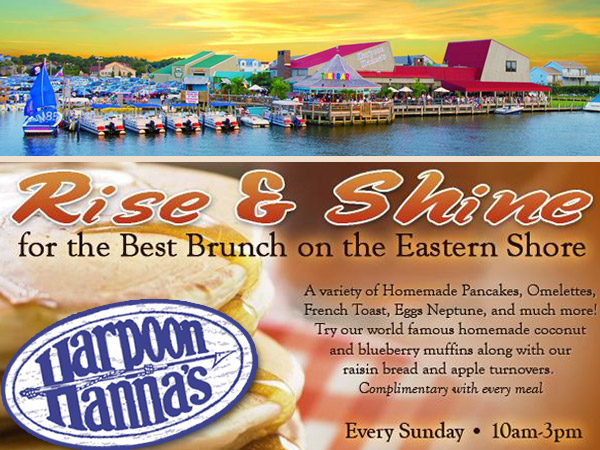 Sunday Brunch at Harpoon Hannas Fenwick Island