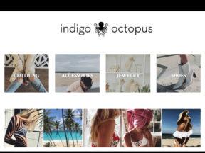 Indigo Octopus Fenwick Island DE